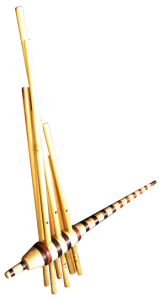 orgue-à-bouche-vietnamien-etienne-sibille-asie